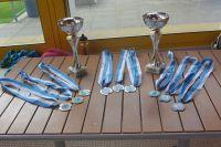 kadettenmurten-schwimmwettkampf18-01